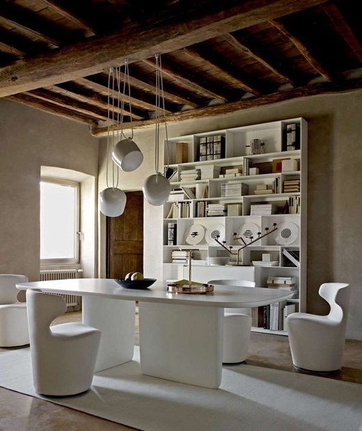 Image Description: chair for dining room by B&B Italia, model Mini Papilio with dining table and a Bookcase behind.